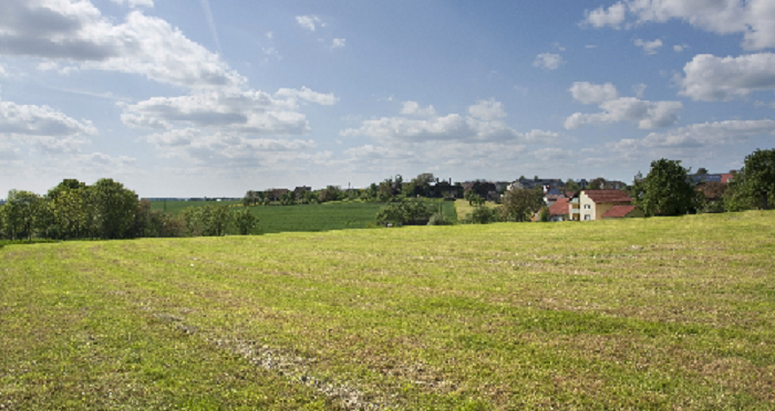 field and houses